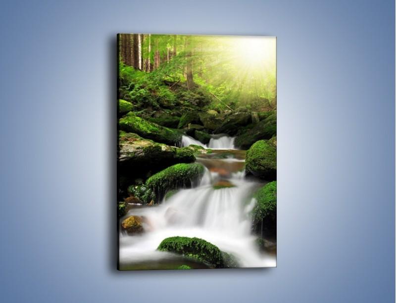 Obraz na płótnie – Mały skok przez wodę – jednoczęściowy prostokątny pionowy KN891