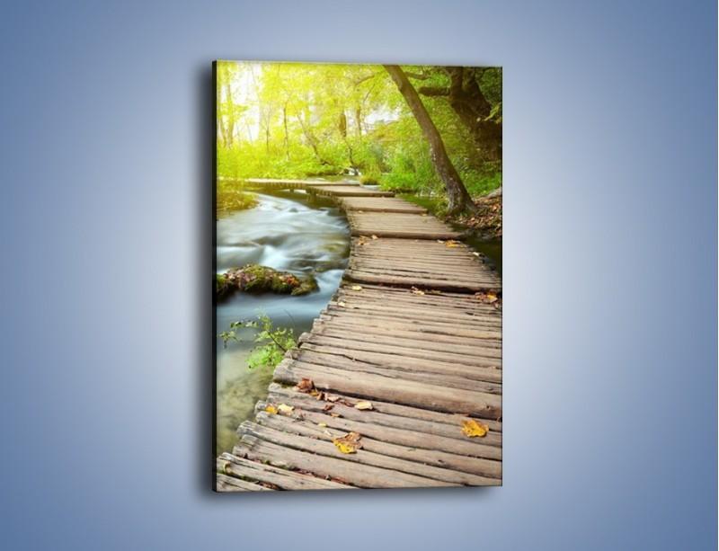 Obraz na płótnie – Listki na drewnianym mostku – jednoczęściowy prostokątny pionowy KN925