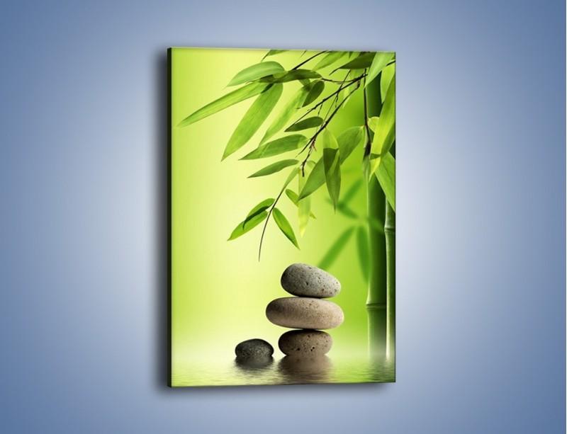 Obraz na płótnie – Kamień i roślinka – jednoczęściowy prostokątny pionowy KN954