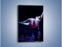 Obraz na płótnie – Ciemna nocą w hamaku – jednoczęściowy prostokątny pionowy L074