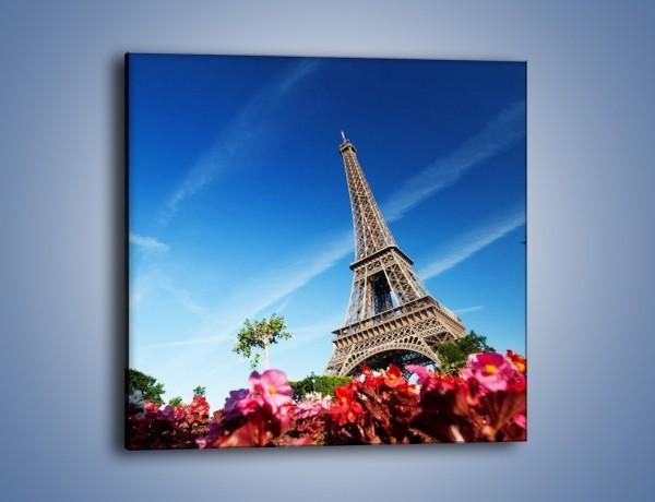 Obraz na płótnie – Wieża Eiffla pod błękitnym niebem – jednoczęściowy kwadratowy AM379