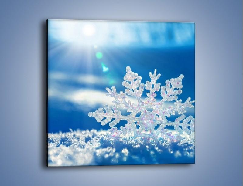 Obraz na płótnie – Diamentowa śnieżynka – jednoczęściowy kwadratowy KN808