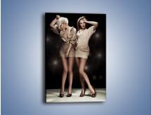 Obraz na płótnie – Blondynka czy brunetka – jednoczęściowy prostokątny pionowy L154