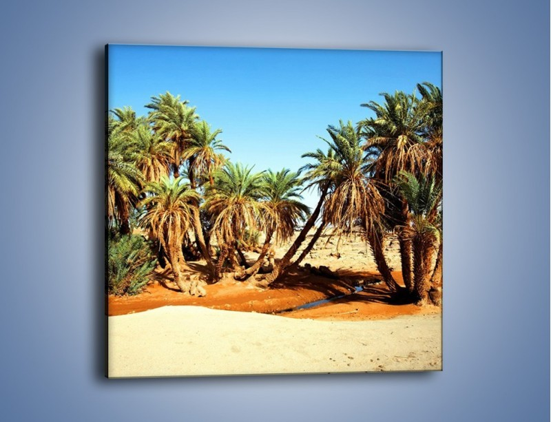 Obraz na płótnie – Palmowa rodzina w komplecie – jednoczęściowy kwadratowy KN809