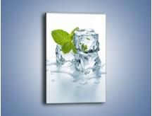 Obraz na płótnie – Kostki lodu i mięta – jednoczęściowy prostokątny pionowy O034