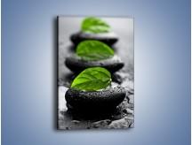 Obraz na płótnie – Liść na czarnym kamieniu – jednoczęściowy prostokątny pionowy O051