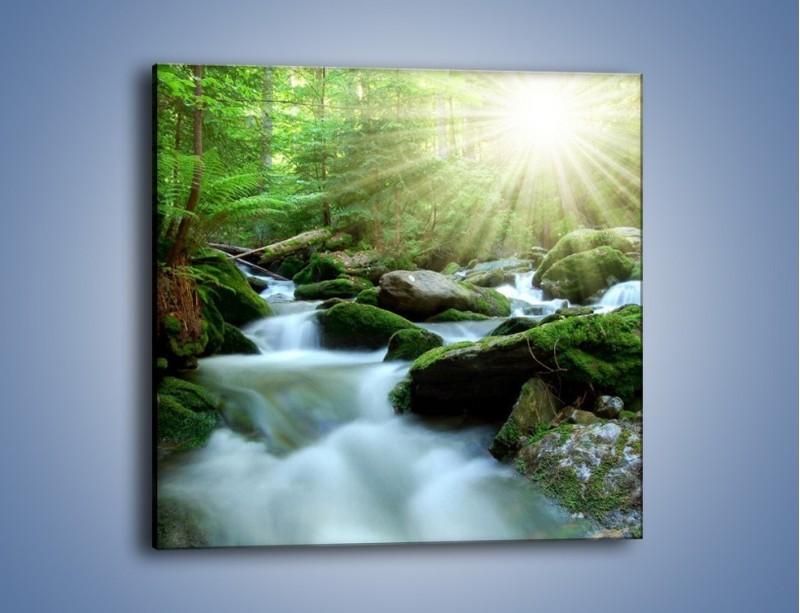 Obraz na płótnie – Silny potok w środku lasu – jednoczęściowy kwadratowy KN861