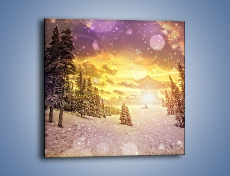 Obraz na płótnie – Śnieżna kraina – jednoczęściowy kwadratowy KN868
