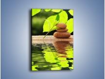 Obraz na płótnie – Liście odbite w lustrze wodnym – jednoczęściowy prostokątny pionowy O149