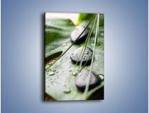 Obraz na płótnie – Krople deszczu na liściu – jednoczęściowy prostokątny pionowy O203