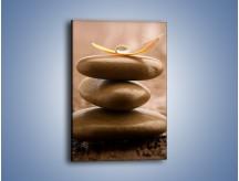 Obraz na płótnie – Delikatne piórko na twardym podłożu – jednoczęściowy prostokątny pionowy O215