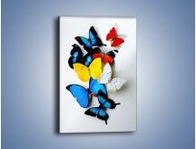 Obraz na płótnie – Kompozycja kolorowych motyli – jednoczęściowy prostokątny pionowy Z009