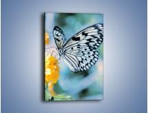 Obraz na płótnie – Motyw zebry w motylu – jednoczęściowy prostokątny pionowy Z010