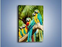Obraz na płótnie – Kolorowe papugi w szeregu – jednoczęściowy prostokątny pionowy Z029