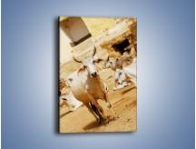 Obraz na płótnie – Leniwe zebu w słońcu – jednoczęściowy prostokątny pionowy Z059