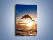Obraz na płótnie – Z delfinem do nieba – jednoczęściowy prostokątny pionowy Z074