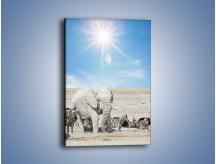 Obraz na płótnie – Słoń i jego przyjaciele – jednoczęściowy prostokątny pionowy Z080