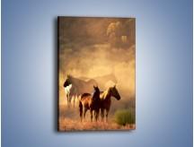 Obraz na płótnie – Konie w swoim towarzystwie – jednoczęściowy prostokątny pionowy Z086