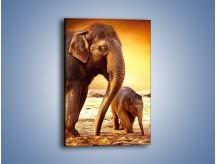 Obraz na płótnie – Tatuś i jego słoniątko – jednoczęściowy prostokątny pionowy Z219
