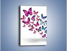 Obraz na płótnie – Rodzina kolorowych motyli – jednoczęściowy prostokątny pionowy Z235