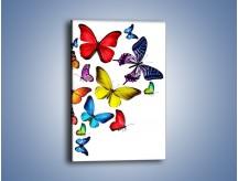 Obraz na płótnie – Kolorowo wśród motyli – jednoczęściowy prostokątny pionowy Z236