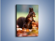 Obraz na płótnie – Mała zdobycz wiewióreczki – jednoczęściowy prostokątny pionowy Z262