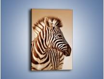 Obraz na płótnie – Zebra w irokezie – jednoczęściowy prostokątny pionowy Z296