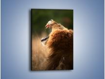 Obraz na płótnie – Lew królem zwierząt – jednoczęściowy prostokątny pionowy Z300
