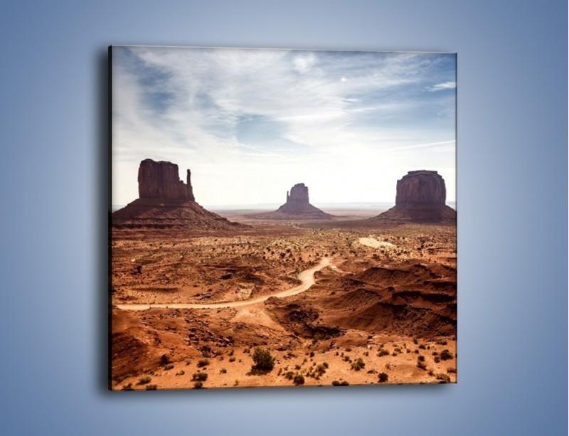 Obraz na płótnie – Spragniona ziemia skąpana w słońcu – jednoczęściowy kwadratowy KN943