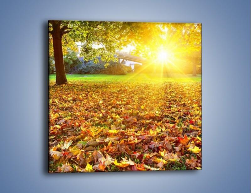 Obraz na płótnie – Poszukajmy idealnego liścia – jednoczęściowy kwadratowy KN946