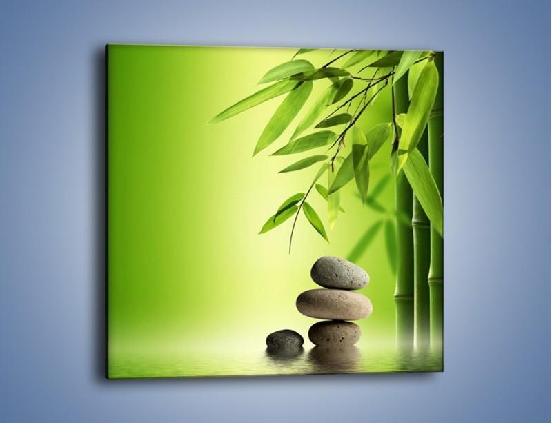 Obraz na płótnie – Kamień i roślinka – jednoczęściowy kwadratowy KN954