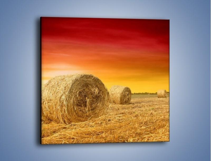 Obraz na płótnie – Koła z siana – jednoczęściowy kwadratowy KN958