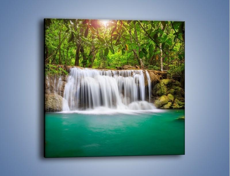 Obraz na płótnie – Kąpiel w środku lasu – jednoczęściowy kwadratowy KN995