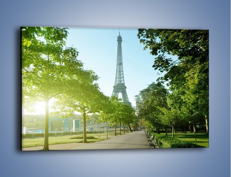 Obraz na płótnie – Uliczka w parku na tle Wieży Eiffla – jednoczęściowy prostokątny poziomy AM308