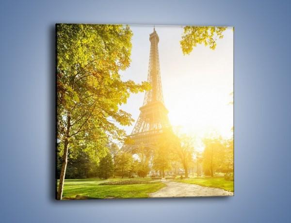 Obraz na płótnie – Wieża Eiffla w świetle słońca – jednoczęściowy kwadratowy AM398