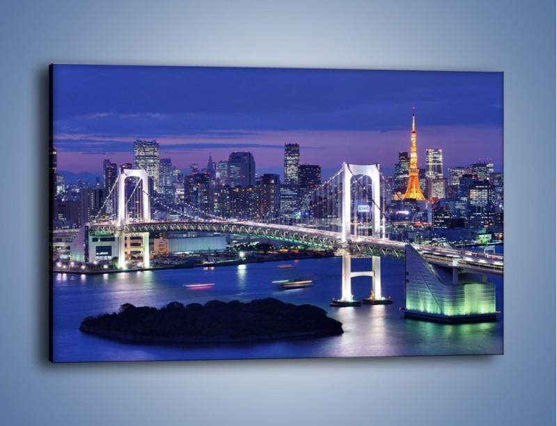 Obraz na płótnie – Tęczowy Most w Tokyo – jednoczęściowy prostokątny poziomy AM460