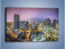 Obraz na płótnie – Centrum Miami – jednoczęściowy prostokątny poziomy AM702