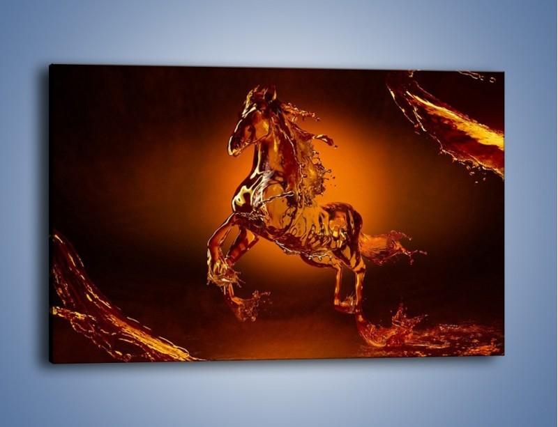 Obraz na płótnie – Wodny koń w mocnym świetle – jednoczęściowy prostokątny poziomy GR228