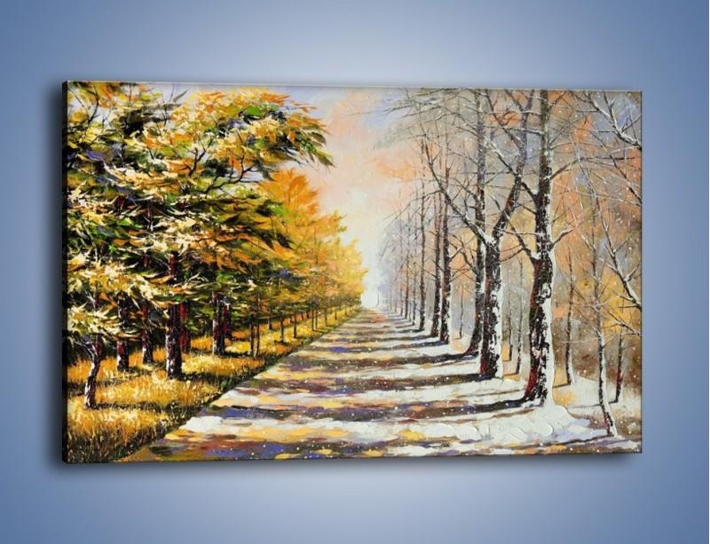 Obraz na płótnie – Trochę jesieni trochę zimy – jednoczęściowy prostokątny poziomy GR292