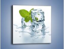 Obraz na płótnie – Kostki lodu i mięta – jednoczęściowy kwadratowy O034