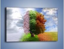 Obraz na płótnie – Cztery pory roku – jednoczęściowy prostokątny poziomy GR333
