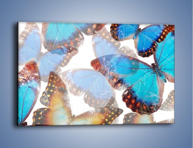 Obraz na płótnie – Motyl w niebieskim kolorze – jednoczęściowy prostokątny poziomy GR403