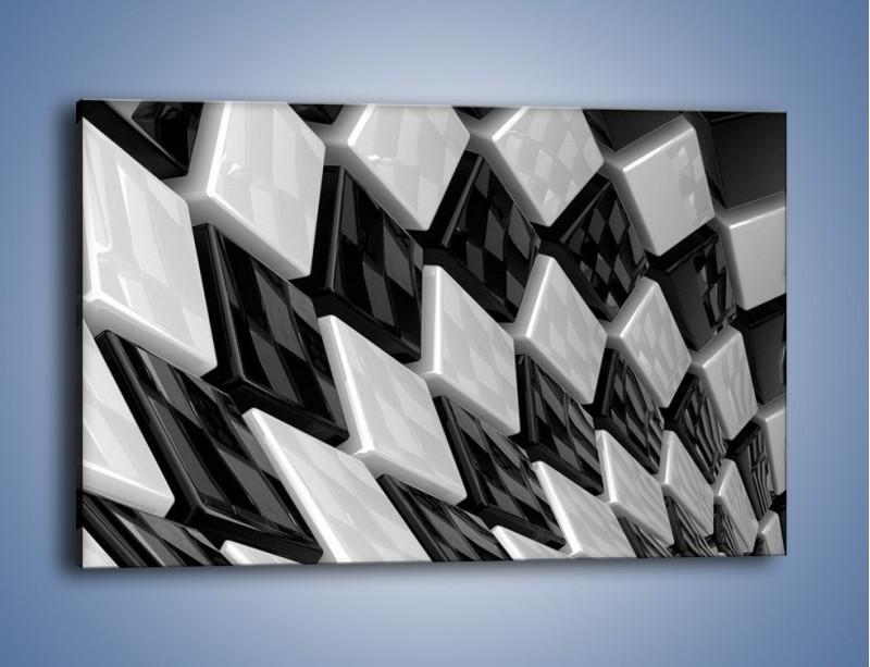 Obraz na płótnie – Czarne czy białe – jednoczęściowy prostokątny poziomy GR425