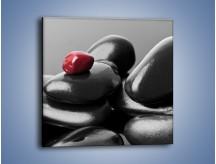 Obraz na płótnie – Czerwień wśród czarności – jednoczęściowy kwadratowy O212