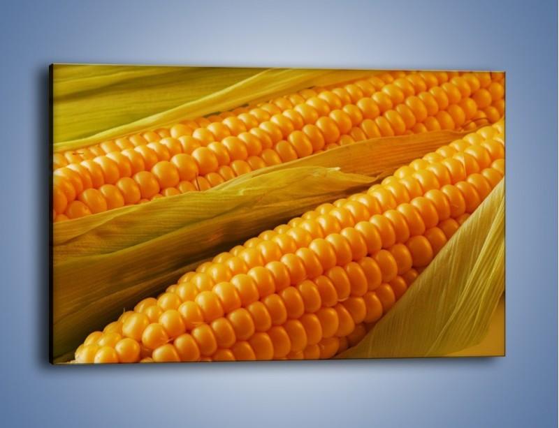 Obraz na płótnie – Kolby dojrzałych kukurydz – jednoczęściowy prostokątny poziomy JN046