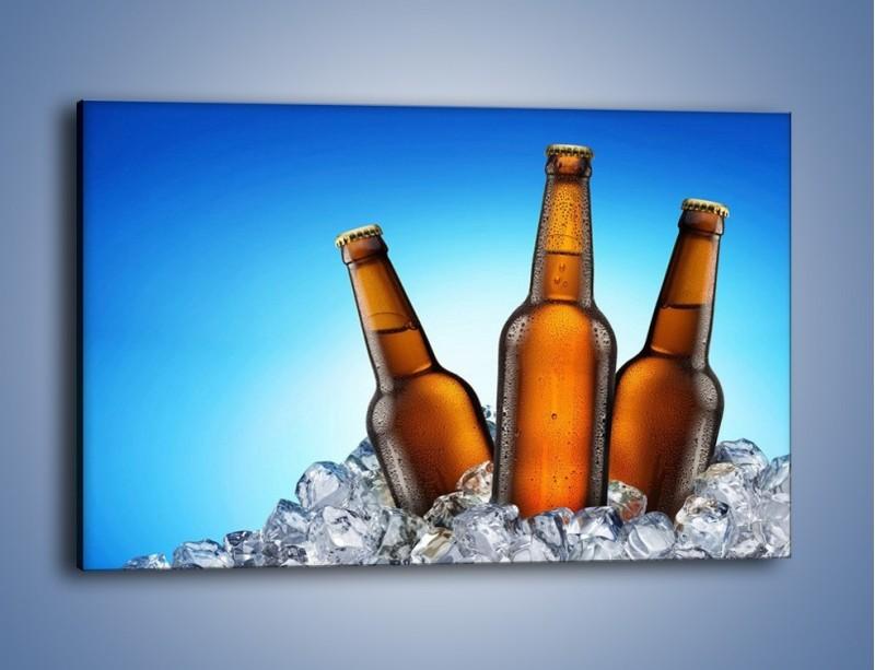 Obraz na płótnie – Szron na butelkach piwa – jednoczęściowy prostokątny poziomy JN075