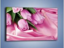 Obraz na płótnie – Atłas wśród tulipanów – jednoczęściowy prostokątny poziomy K152