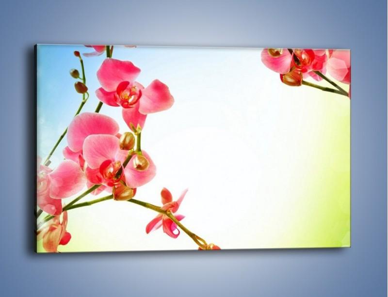 Obraz na płótnie – Akcent kwiatowy – jednoczęściowy prostokątny poziomy K268