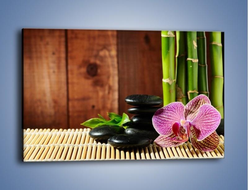 Obraz na płótnie – Bambus storczyk i kamienie – jednoczęściowy prostokątny poziomy K279