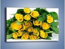Obraz na płótnie – Wiosenny uśmiech w różach – jednoczęściowy prostokątny poziomy K379